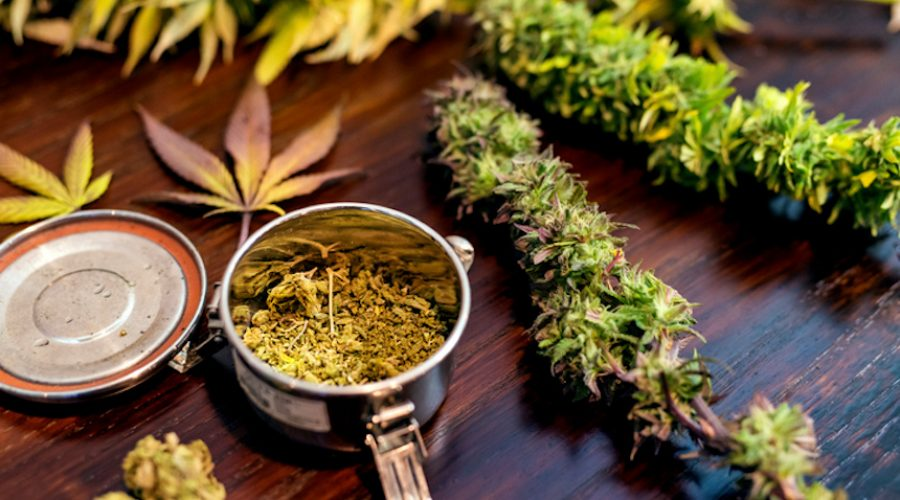 Buy cannabis products at the best Legal Marihuana (Erba legale) site
